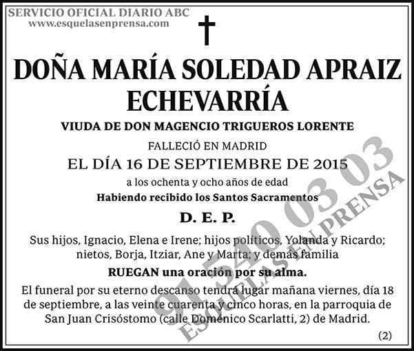 María Soledad Apraiz Echevarría